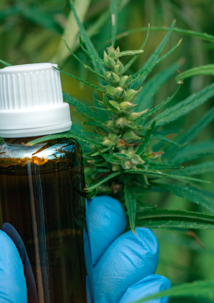 CBD Oil Proves Popular for Aiding Restful Sleep